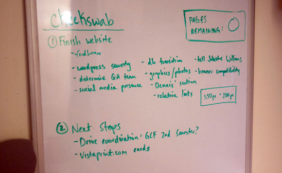 Pre-Launch Whiteboard